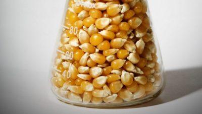 OGM artoa